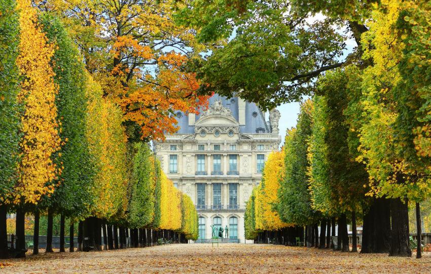Jardins-des-Tuileries-en-automne-850x540-C-Thinkstock_bloc_big_diaporama