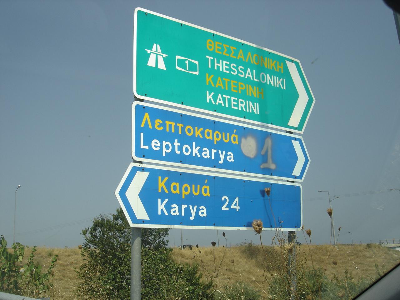 Leptokarya_plates